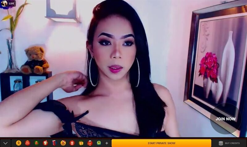 Young ladyboy cam girl on LiveJasmin