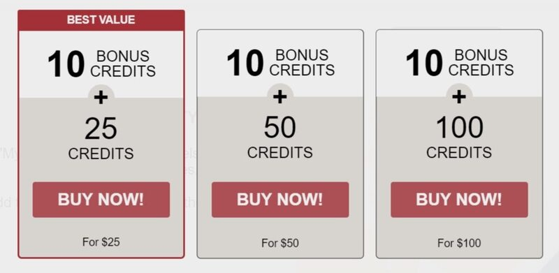 The credit packages offered to new members on Shemale.com